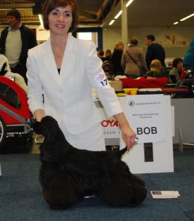 lola best of breed dortmund 2011
