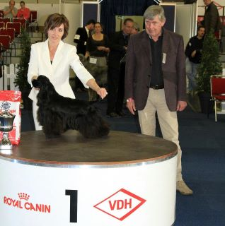 lola group winning dortmund 2011 - 2